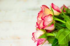 Rosas rojas en fondo de madera imagen de archivo