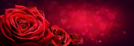 Rosas rojas en forma del corazón imagenes de archivo