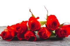 Rosas rojas en un fondo blanco Imagen de archivo libre de regalías