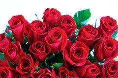Rosas rojas en un manojo Fotografía de archivo libre de regalías