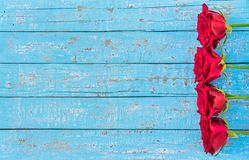Rosas rojas, fondo romántico de las flores para el mensaje del amor el día del ` s de la tarjeta del día de San Valentín Fotografía de archivo libre de regalías