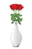 Rosas rojas hermosas en el florero aislado en blanco Fotografía de archivo