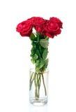 Rosas rojas hermosas en un florero Imágenes de archivo libres de regalías