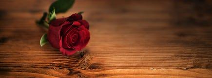 Rosas rojas hermosas para el día de tarjetas del día de San Valentín Fotografía de archivo libre de regalías
