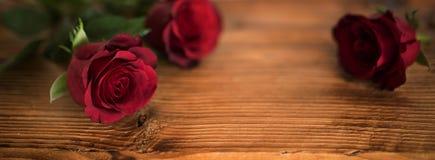 Rosas rojas hermosas para el día de tarjetas del día de San Valentín Foto de archivo libre de regalías