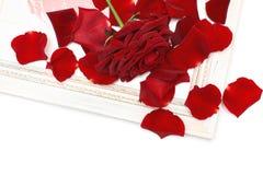 Rosas rojas, pétalos y marco de madera de la vendimia de la esquina fotos de archivo