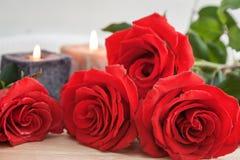 Rosas rojas para el día de tarjeta del día de San Valentín Fotografía de archivo libre de regalías