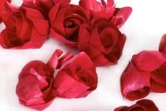 Rosas rojas para la tarjeta del día de San Valentín, aniversario Imágenes de archivo libres de regalías