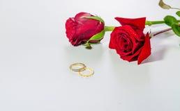 Rosas rojas románticas y anillos de compromiso aislados en el fondo blanco Foto de archivo