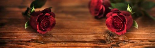 Rosas rojas simbólicas para el día de tarjetas del día de San Valentín Fotografía de archivo libre de regalías
