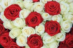 Rosas rojas y blancas en un arreglo de la boda Fotografía de archivo libre de regalías