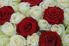 Rosas rojas y blancas en un arreglo de la boda Imagen de archivo libre de regalías