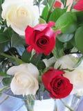 Rosas rojas y blancas en un ramo precioso Imágenes de archivo libres de regalías