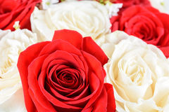 Rosas rojas y blancas que se casan el ramo Imágenes de archivo libres de regalías