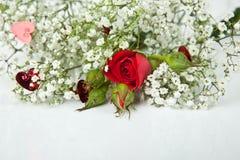 Rosas rojas y flores blancas Fotos de archivo libres de regalías