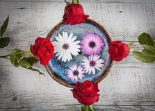 Rosas rojas y flores del gerbera en la tabla de madera Imágenes de archivo libres de regalías