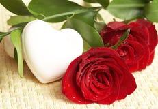 Rosas rojo oscuro con gotas del agua Imágenes de archivo libres de regalías