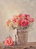 Rosas rosadas Imágenes de archivo libres de regalías