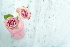 Rosas rosadas con el espacio de la copia Imagen de archivo libre de regalías