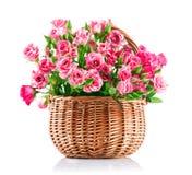 Rosas rosadas del manojo en cesta de mimbre fotografía de archivo