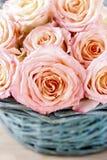 Rosas rosadas en cesta de mimbre de la turquesa Fotos de archivo libres de regalías