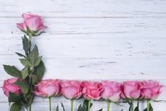 Rosas rosadas en el fondo de madera blanco con el espacio de la copia Visión superior Imagen de archivo
