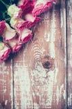 Rosas rosadas en el viejo tablero de madera Foto de archivo libre de regalías