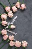 Rosas rosadas en fondo gris Imagen de archivo libre de regalías