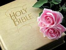 Rosas rosadas en la biblia santa Imagen de archivo libre de regalías