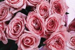 Rosas rosadas entonadas, imagen de flores, fondo floral, visión superior Fotografía de archivo