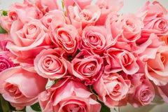 Rosas rosadas Es muchas rosas rosadas Imagenes de archivo