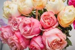 Rosas rosadas Es muchas rosas rosadas Imagen de archivo libre de regalías