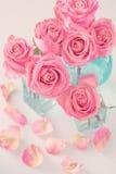 Rosas rosadas hermosas Imagen de archivo libre de regalías