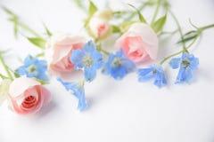 Rosas rosadas y flores azules Fotos de archivo