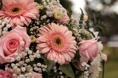 Rosas rosadas y gerbera rosado Foto de archivo