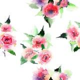 Rosas rosadas y rojas del verano colorido floral precioso sofisticado elegante de la primavera con el modelo verde de la diagonal Imagen de archivo