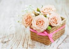 Rosas rosas claras Foto de archivo libre de regalías