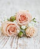 Rosas rosas claras Imágenes de archivo libres de regalías
