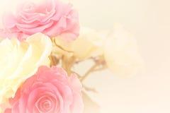 Rosas rosas claras en estilo suave del color y de la falta de definición Fotos de archivo libres de regalías
