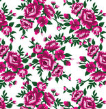 Rosas roxas em uma densidade branca do fundo Fotografia de Stock