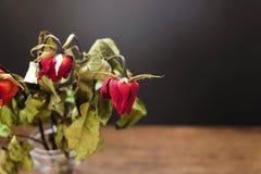 Rosas secadas em um vaso na tabela de madeira no fundo preto fotos de stock