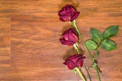 Rosas secadas en piso laminado imagen de archivo libre de regalías