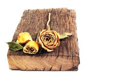 Rosas secadas en una vieja tarjeta de madera en la parte posterior aislada Foto de archivo