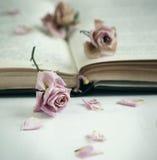Rosas secas e livro velho foto de stock royalty free