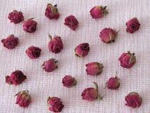Rosas secas en la arpillera Fotos de archivo