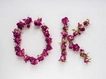 Rosas secas no fundo branco Fotografia de Stock Royalty Free