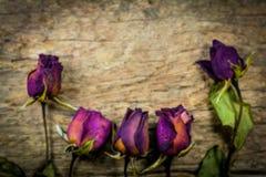 Rosas secas obscuras na textura de madeira, amor seco no Valentim, foco seleto Foto de Stock Royalty Free