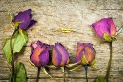 Rosas secas obscuras na textura de madeira, amor seco no Valentim, foco seleto Fotos de Stock Royalty Free