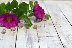Rosas selvagens bonitas com bolas de cristal no fundo de madeira Imagens de Stock