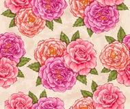 Rosas sem emenda Foto de Stock Royalty Free